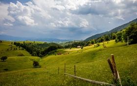 Обои небо, трава, облака, цветы, забор, поля, дома