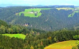 Обои солнечно, луга, домики, горы, Австрия, деревья, зелень