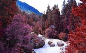 Обои река, горы, пейзаж, деревья, лес