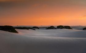 Обои закат, горизонт, дюны, Бразилия, кусты, Мараньян, оранжевое небо
