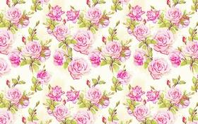 Обои текстура, цветок, роза