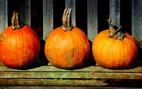 Обои pumpkins, storage, stalks