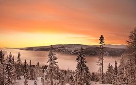 Обои леса, рассвет, горы, деревья, снег, зима