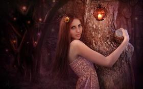 Картинка лес, деревья, ночь, улыбка, арт, шатенка, фонарики
