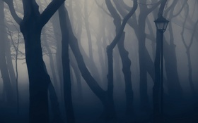 Обои деревья, туман, парк, фонарь
