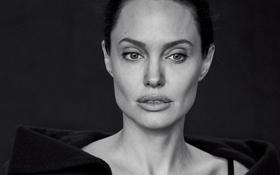 Картинка крупный план, фон, модель, портрет, актриса, Анджелина Джоли, Angelina Jolie