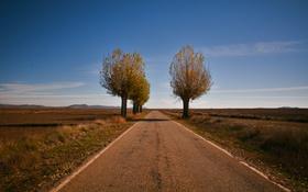 Картинка дорога, поле, небо, облака, деревья, холмы, тени