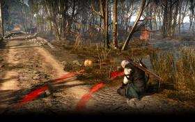 Обои деревья, болото, ведьмак, rpg, геральт, дикая охота, wild hunt