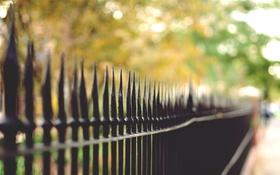 Обои забор, ограда, боке