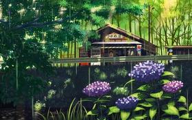 Картинка лес, девушка, деревья, цветы, мост, природа, река