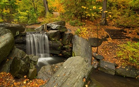 Картинка осень, листья, деревья, парк, ручей, камни, водопад