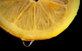 Обои juice, lemon, yellow, slice