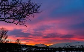 Картинка закат, облака, небо, силуэт, дерево, зима, горы