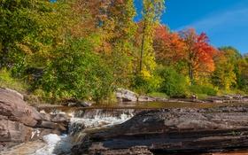 Обои осень, лес, небо, листья, деревья, река, скалы
