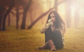 Картинка холод, осень, девушка, деревья, туман, парк, Одиночество