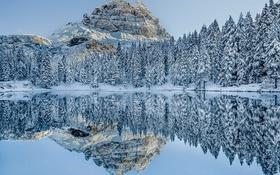 Обои деревья, зима, горы, снег, отражение, зеркало, озеро