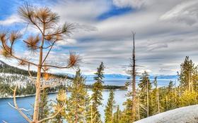Картинка Lake Tahoe, Тахо, США, Калифорния, озеро, горы, деревья