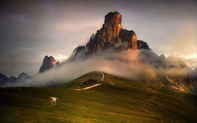 Картинка небо, горы, дом, корова