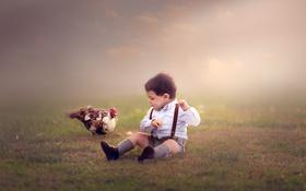 Картинка настроение, птица, мальчик