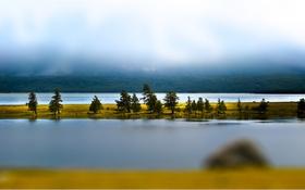 Обои осень, деревья, озеро, остров