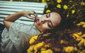 Картинка зубки, цветы, веснушки, боке