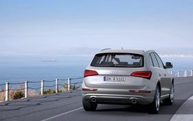 Обои Audi, Море, Авто, Ауди, День, Внедорожник, Вид сзади