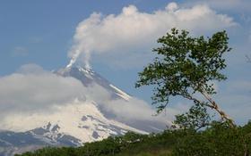 Картинка небо, облака, горы, природа, фото, дерево, Камчатка