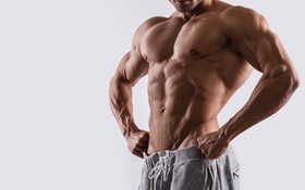 Обои sexy, muscles, pose, Herculean