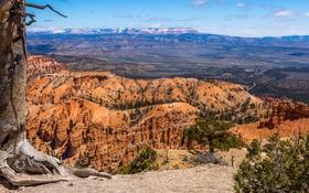 Картинка небо, горы, дерево, скалы, каньон, ущелье