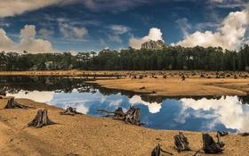 Обои озеро, зеркало, отражение, небо, коряги, деревья, облака