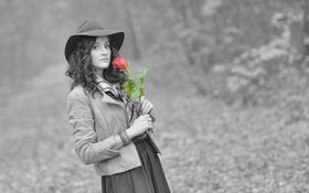 Картинка взгляд, девушка, роза