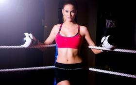 Обои спорт, девушка, бокс