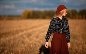 Картинка поле, осень, девушка, солнце, природа, girl, берет