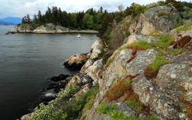 Обои трава, деревья, камни, побережье, Канада, катер, залив