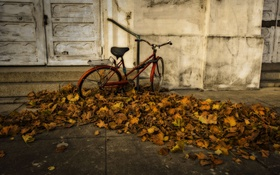 Обои осень, велосипед, город, hdr
