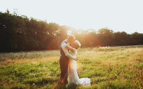 Обои поле, трава, девушка, солнце, свет, блондинка, парень