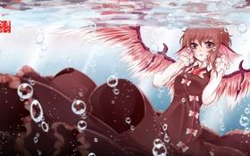 Обои девушка, пузыри, крылья, аниме, арт, под водой, touhou