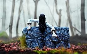 Обои лес, туман, волосы, игрушки, колодец, The Ring, Sadako Yamamura