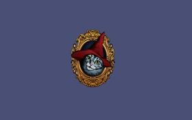 Картинка кошка, портрет, колпак красный, картина, минимализм, cat, шапка