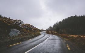 Картинка дорога, волны, облака, деревья