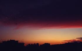 Обои небо, облака, салют, сумерки