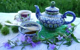 Обои чай, мед, чашка, натюрморт, колокольчики, заварник