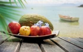 Обои море, облака, цветы, лодка, яблоки, кокос, фрукты