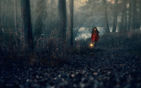 Обои лес, девушка, фонарь, Hope carrier