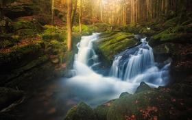 Картинка осень, лес, листья, солнце, деревья, скалы, каскад