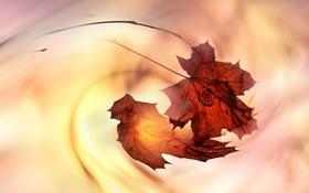 Картинка осень, листья, природа, фон, цвет