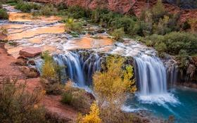 Обои ручей, камни, водопад, США, кусты, Arizona, Grand Canyon