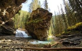 Обои лес, горы, река, скалы, водопад, Канада, Альберта