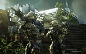 Картинка оружие, теплица, Crysis 2, военные, нанокостюмы