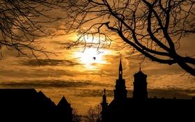 Картинка пейзаж, ночь, город
